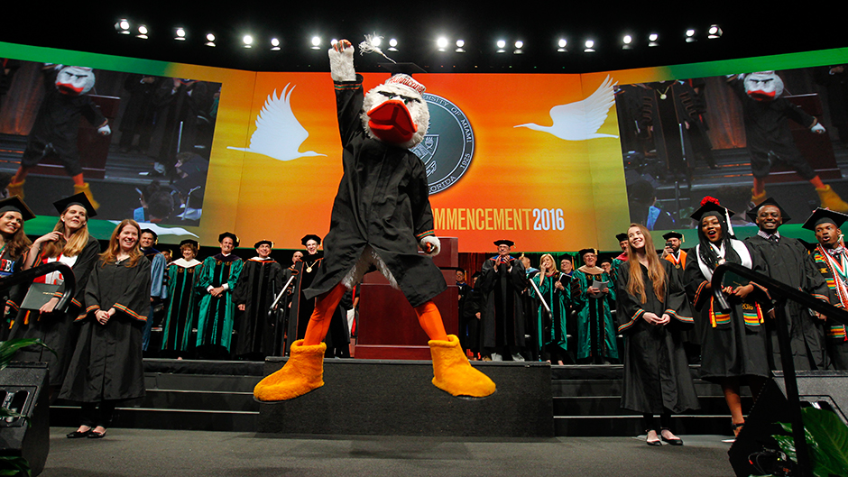 Sebastian the Ibis at Commencement