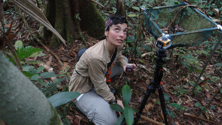 Graduate student Belen Fadrique in the field.