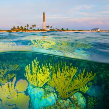 Lighthouse by Carlton Ward Jr