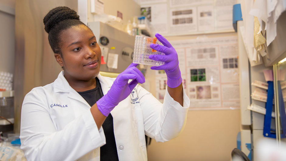 Fedelene Camille is interning this summer in a research lab at the Miller School of Medicine