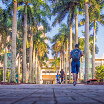 Students walk toward the Otto G. Richter Library on the University of Miami Coral Gables campus.