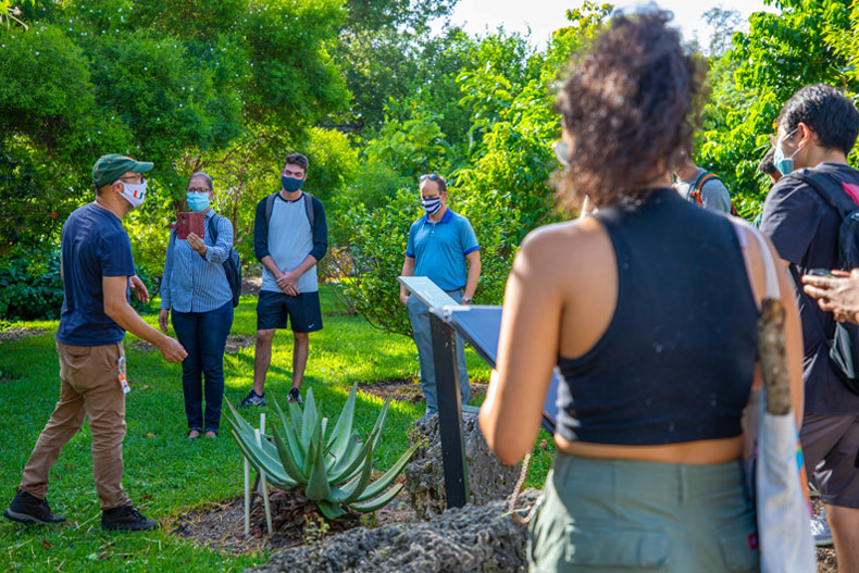Mauro Galetti, director of the Gifford Arboretum, shows students the Mayan section of the tree haven. Photo: Mike Montero/University of Miami