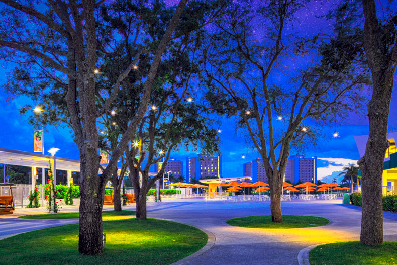 An evening view of the Lakeside Patio. Photo: Mike Montero/University of Miami