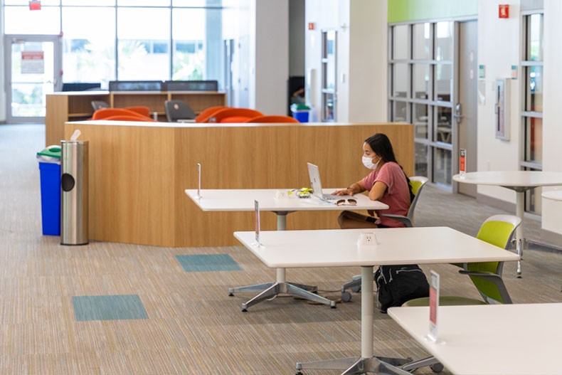 A student studies in the Learning Commons at Richter Library.
