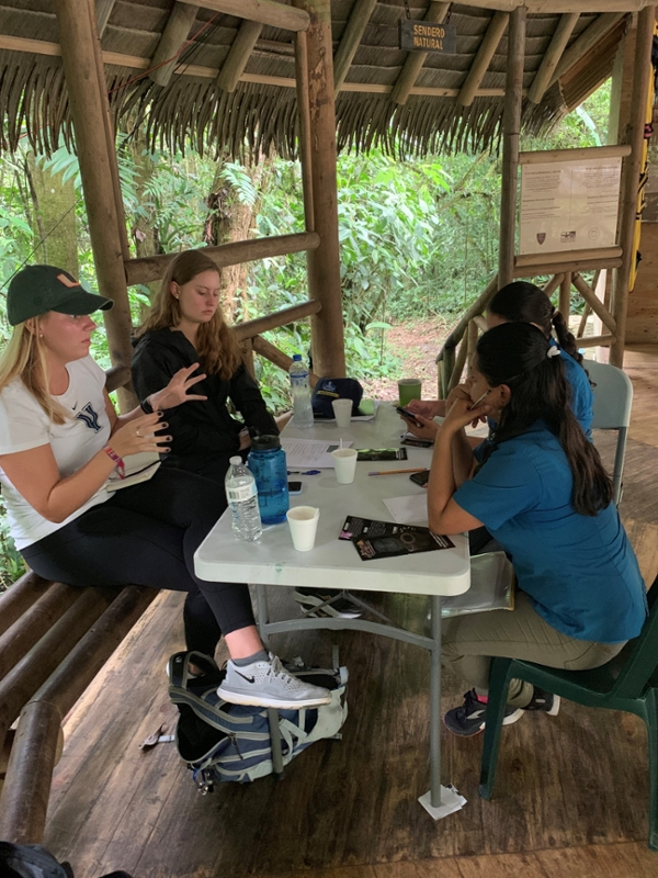 Group Working in Costa Rica